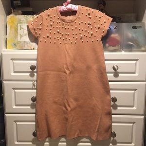 Zara fall dress size medium